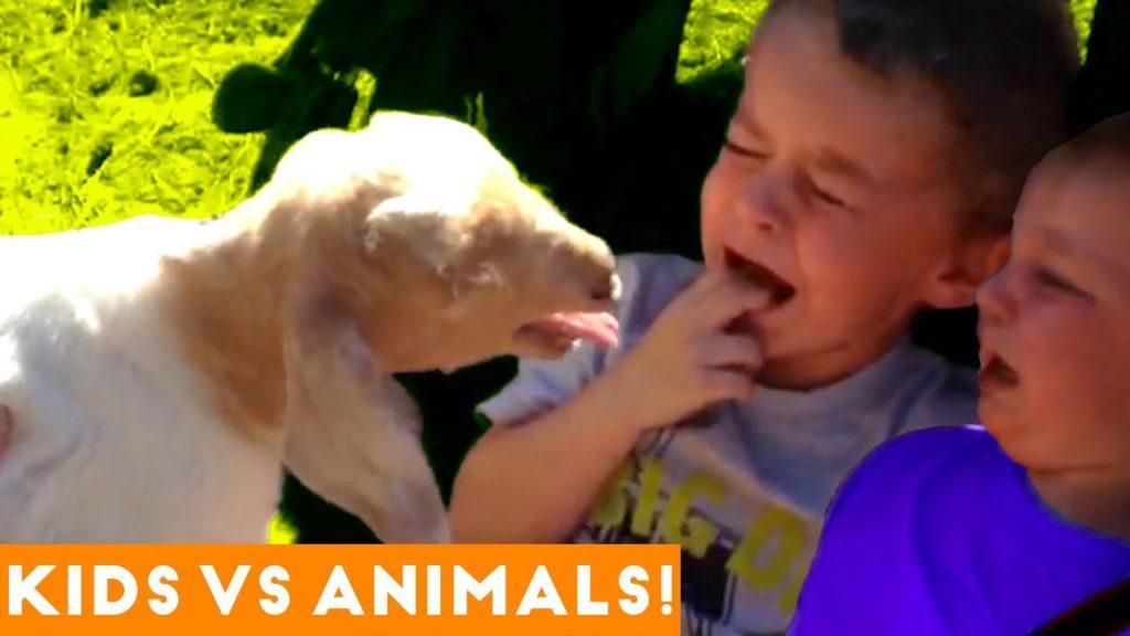 The Funniest Pets Vs Children & Infants Fail Compilation | Humorous Pet Movies